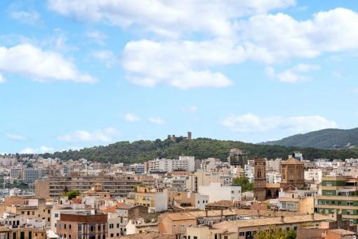 Weitblick über Palma
