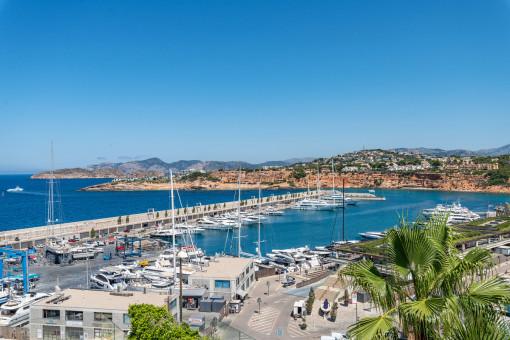 Fantastischer Hafen- und Meerblick