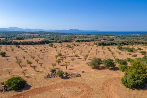 Alternative Ansicht des Landguts