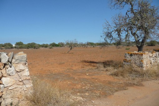 Schönes Grundstück nahe Santanyi mit genehmigtem Projekt
