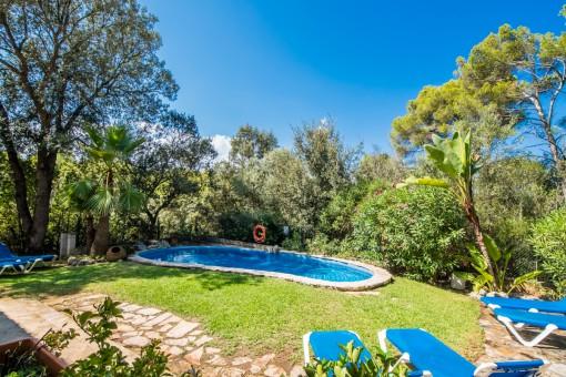 Poolbereich umgeben von einem grünen Garten