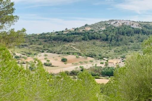 Grundstück des Projektes
