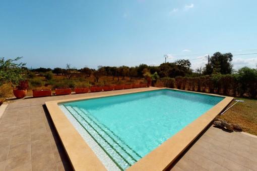 Großzügiger Swimmingpool 5 x 10 Meter