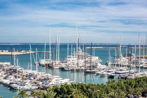 Großartige Investitionsmöglichkeit: Geräumige Wohnung mit Pool und spektakulärem Blick über die Bucht von Palma