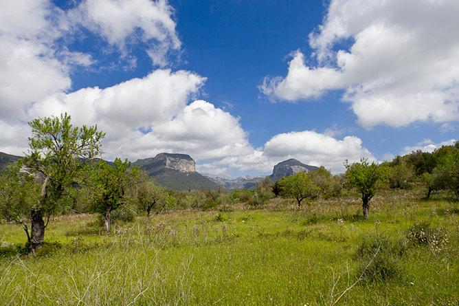 Naturpark Alaro