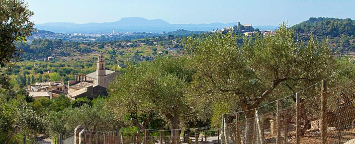 Caimari auf Mallorca